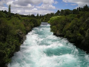 Tess Whitehurst-Riding the River of Your Divine Life Path