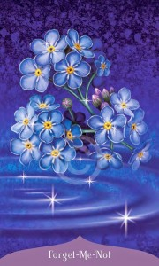 Flower Oracle Message: With a Fresh Perspective, Your Problem Might Not Actually Be a Problem by Tess Whitehurst