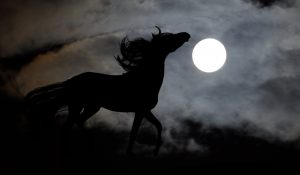Tess Whitehurst-Nightmare Transmutation Spell