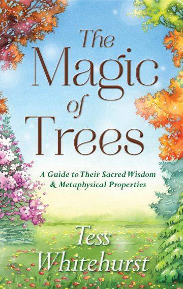 The Magic of Trees